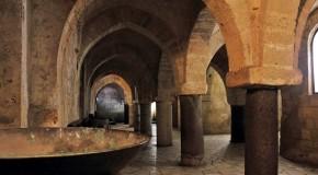 Visita Guidata dal periodo Neolitico al Cristianesimo di Taranto